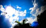 Under cerulean skies....