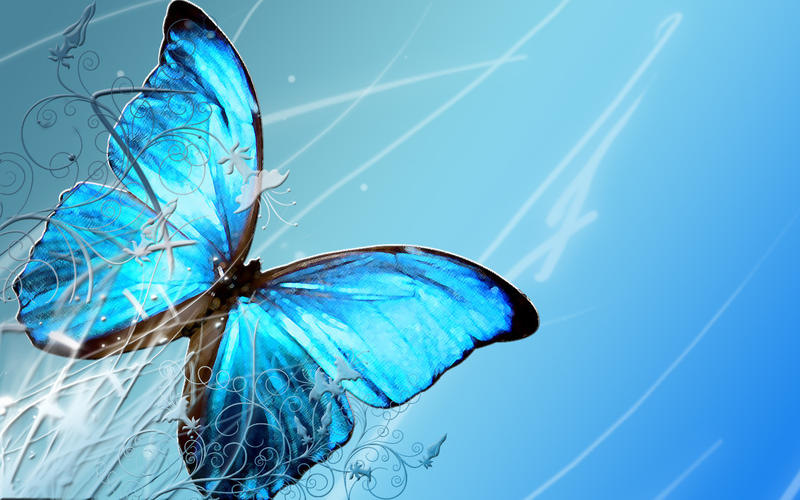 Blue Butterfly by crazthonfry
