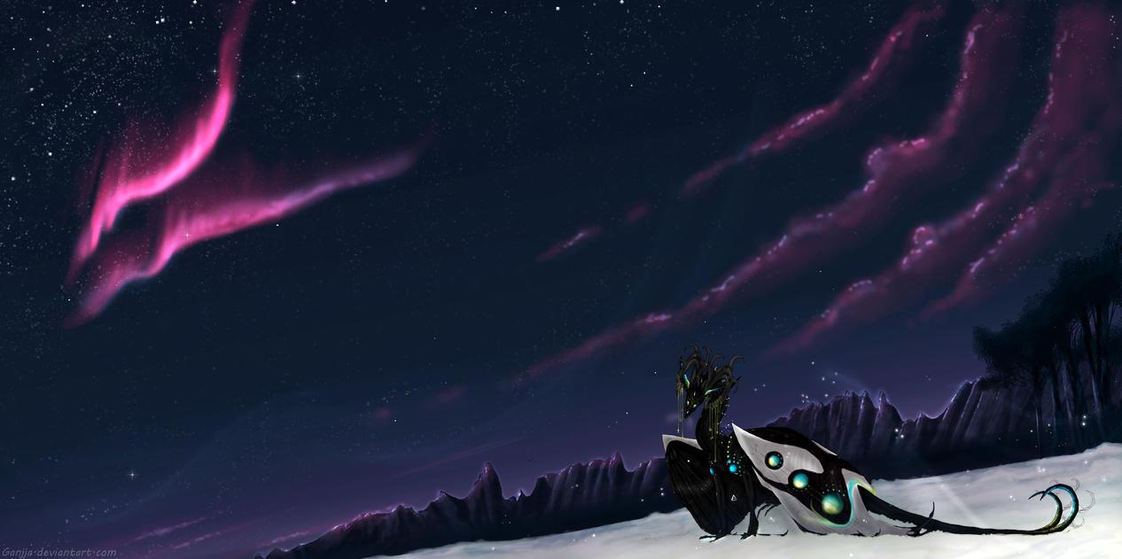 Luminary by Ganjja