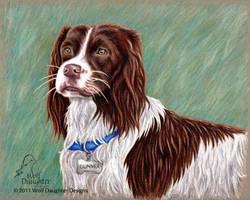 Gunner - Dog Portrait by Wolf-Daughter