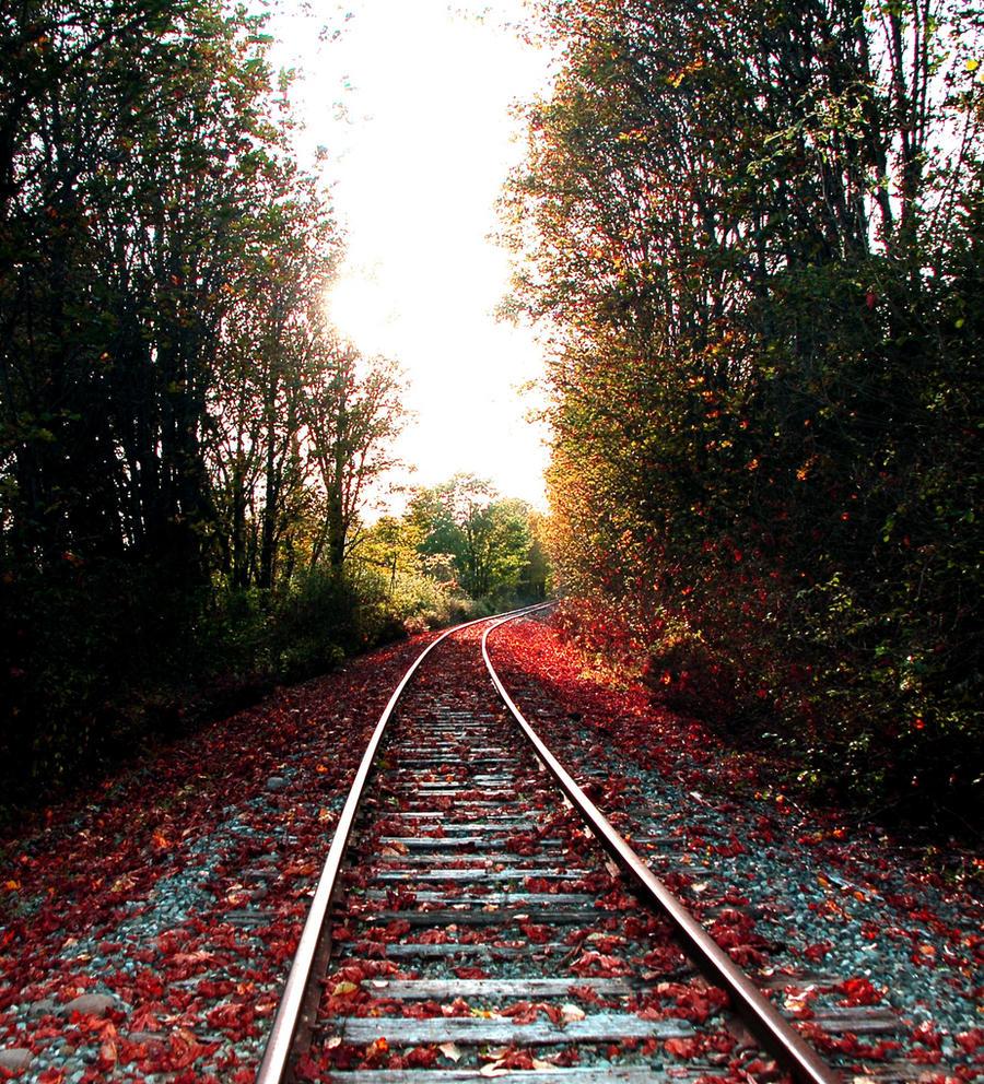 Autumn Leaves by SavanaAshleigh