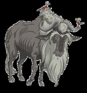 Elder Dolf