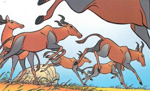 Topi antelope stampede