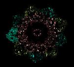 Florsita
