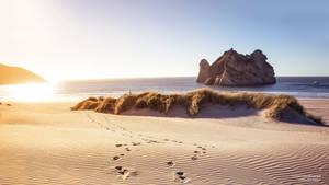 Wharariky Beach