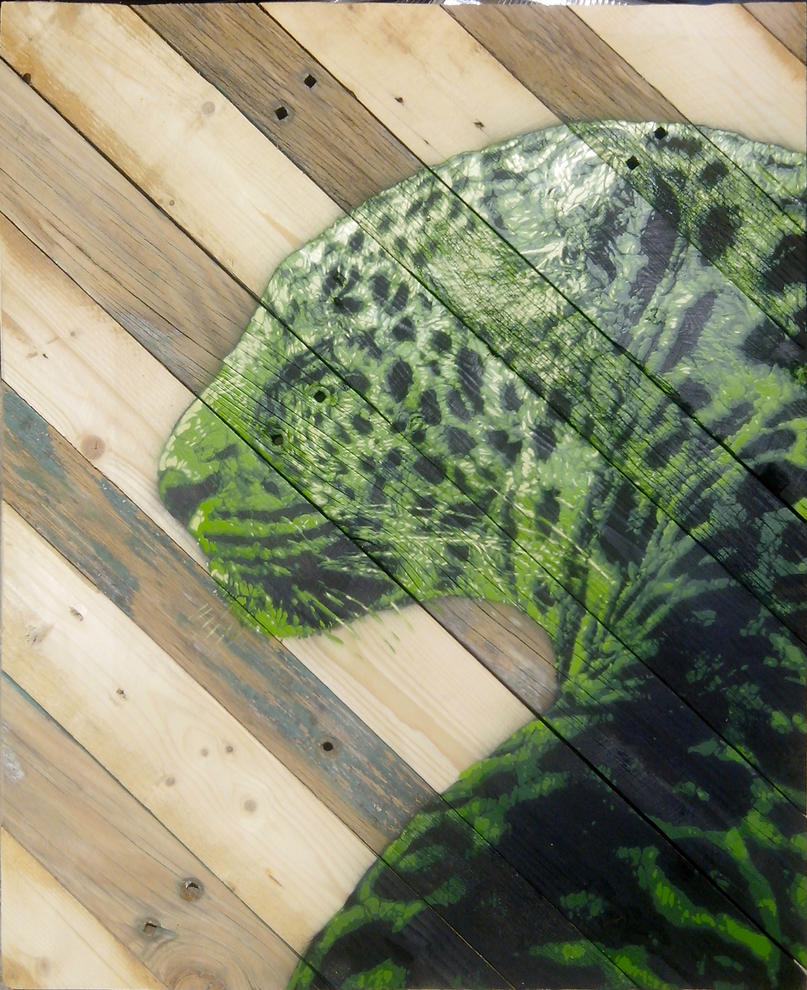 Green leopard by AmineShow