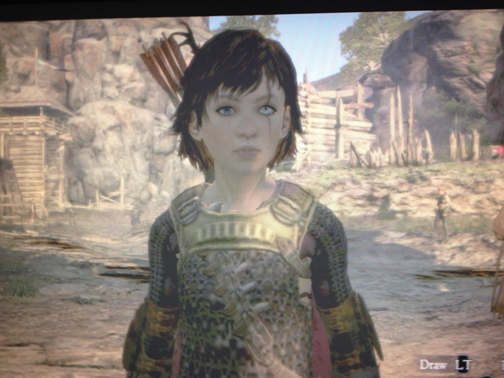 Dragons Dogma- My character by the end by lXxLinkinxXl