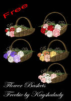 Flower baskets by kayshalady