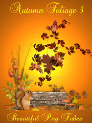 Autumn foliage 3 PNG Collection