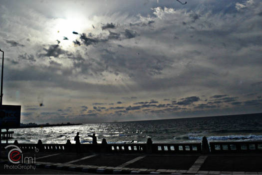 alexandria shore 2