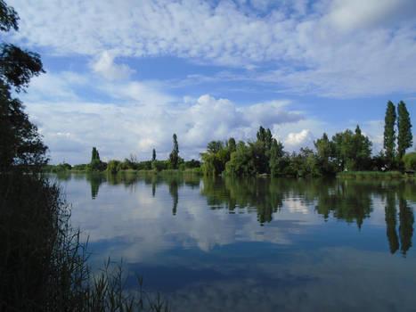 The Danube Branch