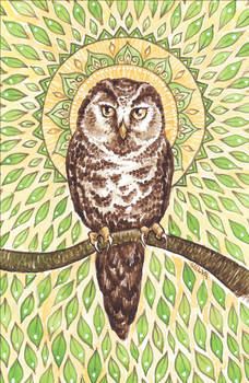 Owl with leaves pattern