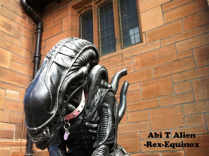 Abi T Alien ID by Rex-equinox