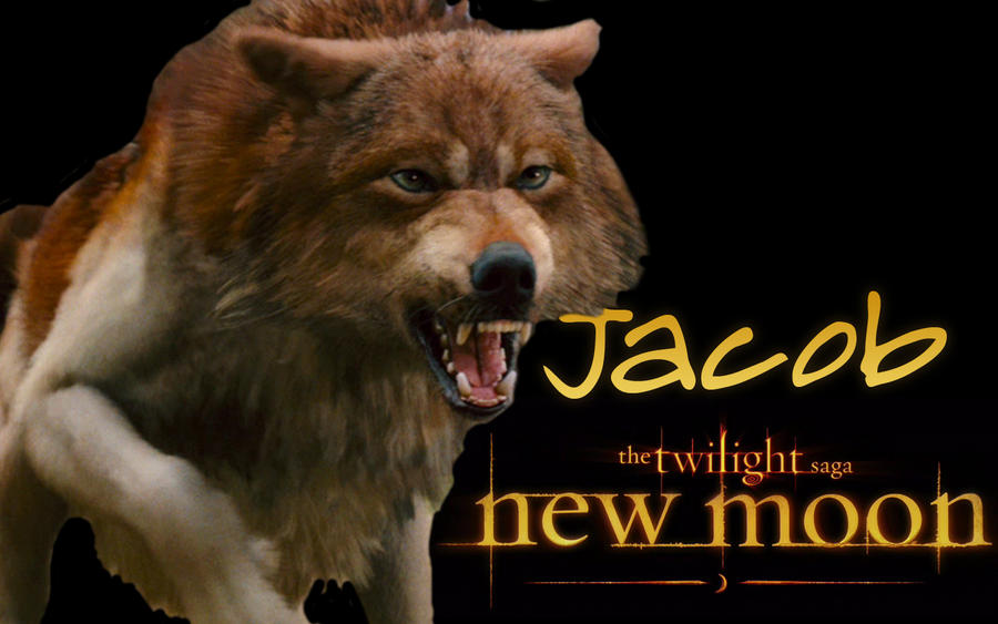 moon wallpaper. New Moon Wallpaper - Jacob by