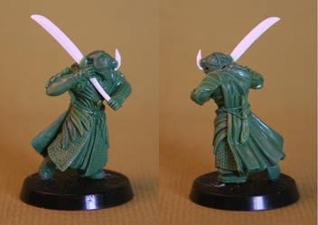 elven swordsman