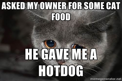 asked my owner for some cat food.. by NeycuuRose1
