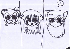 Panda, Butterfly and Midnight