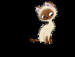 A kitten named Woof