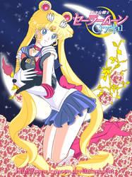 Sailor Moon Crystal 2014