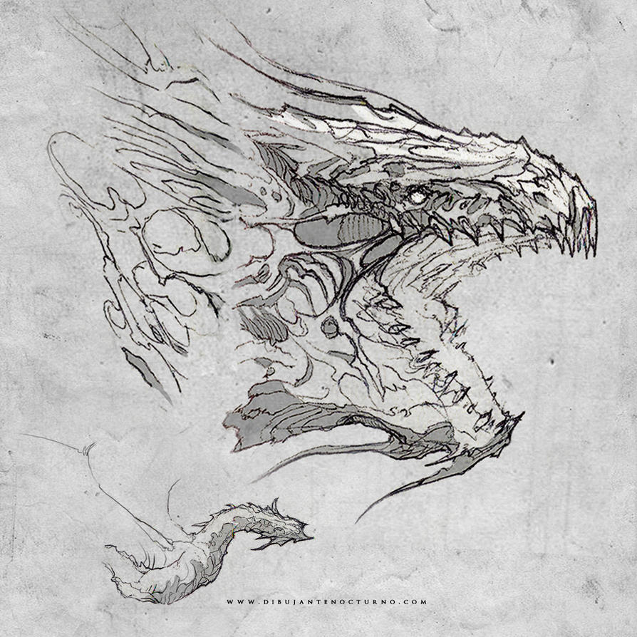 Sketch dragon by Dibujante-nocturno on DeviantArt