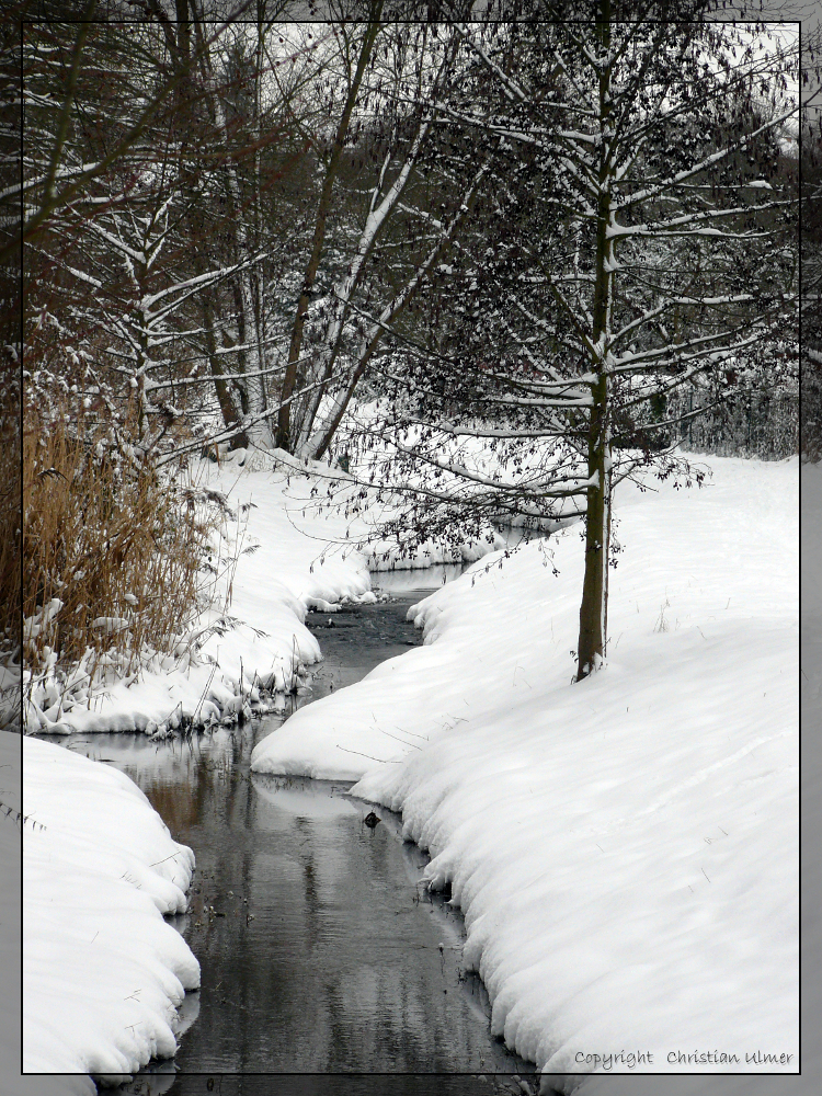 Snowy Creek - II