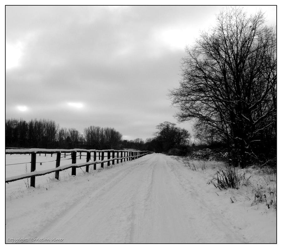 Winterly Path