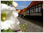Houses of Ebeltoft - VII