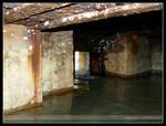 Old German Bunker - VIII