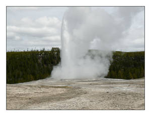 Old Faithful - I