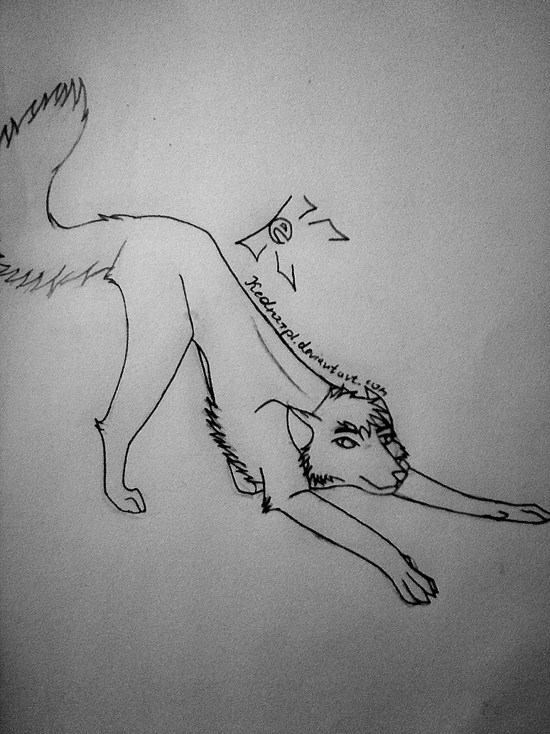 Art wolf by Kedra-PL