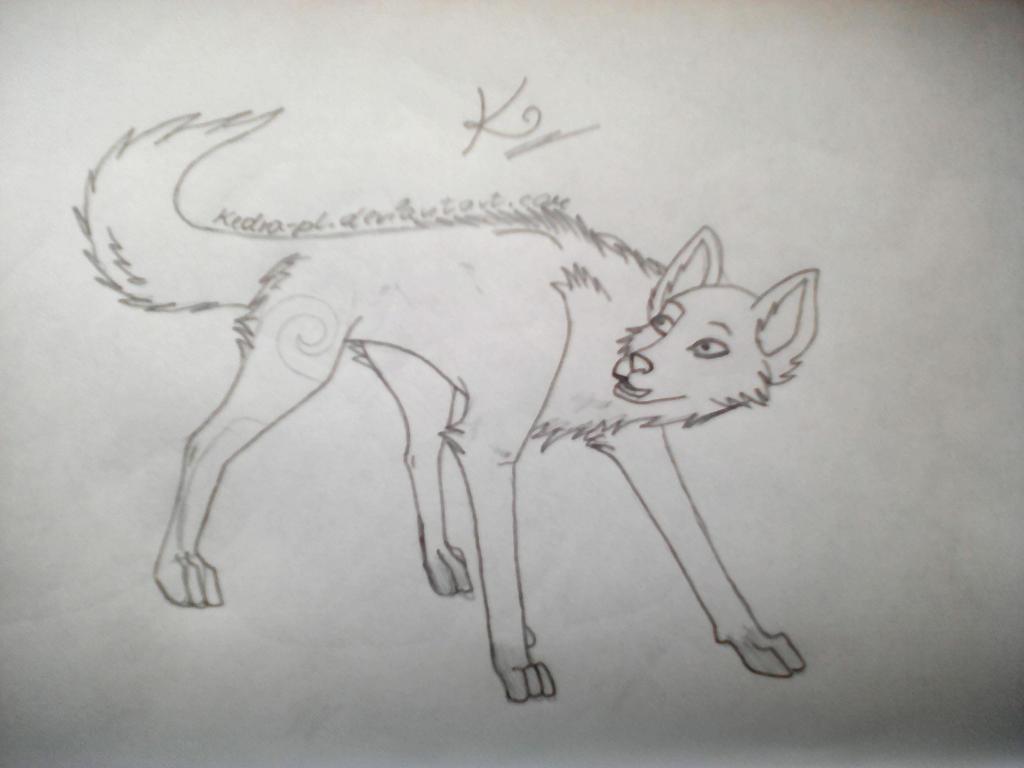 New Art I by Kedra-PL
