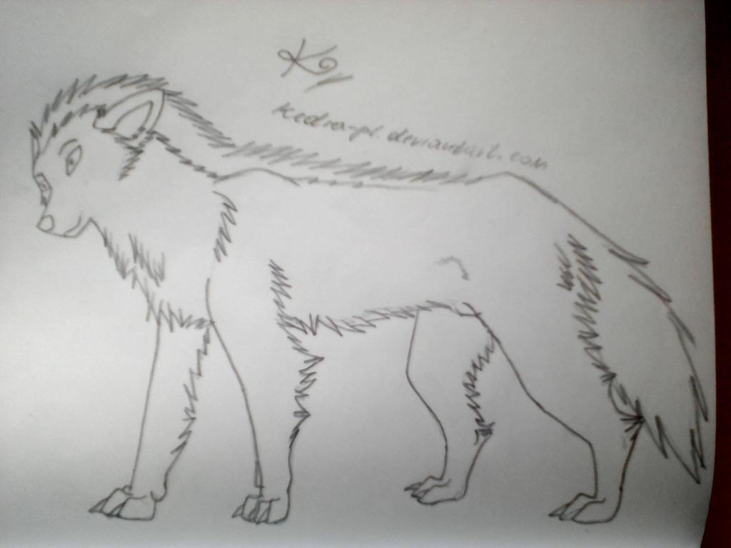 New Art V by Kedra-PL