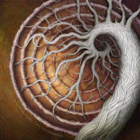 Medusa's Garden: Afterlife