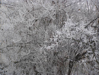 Bulgarian Winter by samvimes75