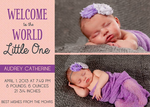 Birth Announcemnt