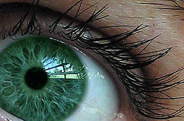 eye by NerdBeach