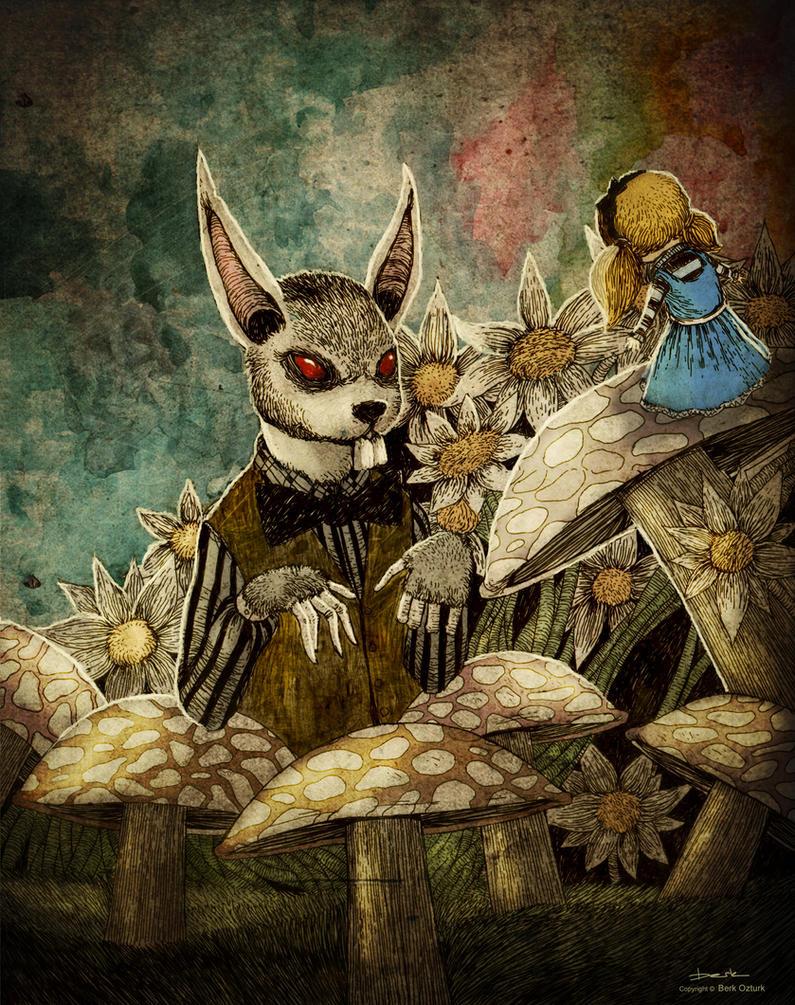 Alice by berkozturk