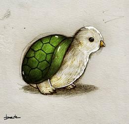 turtlebird by berkozturk