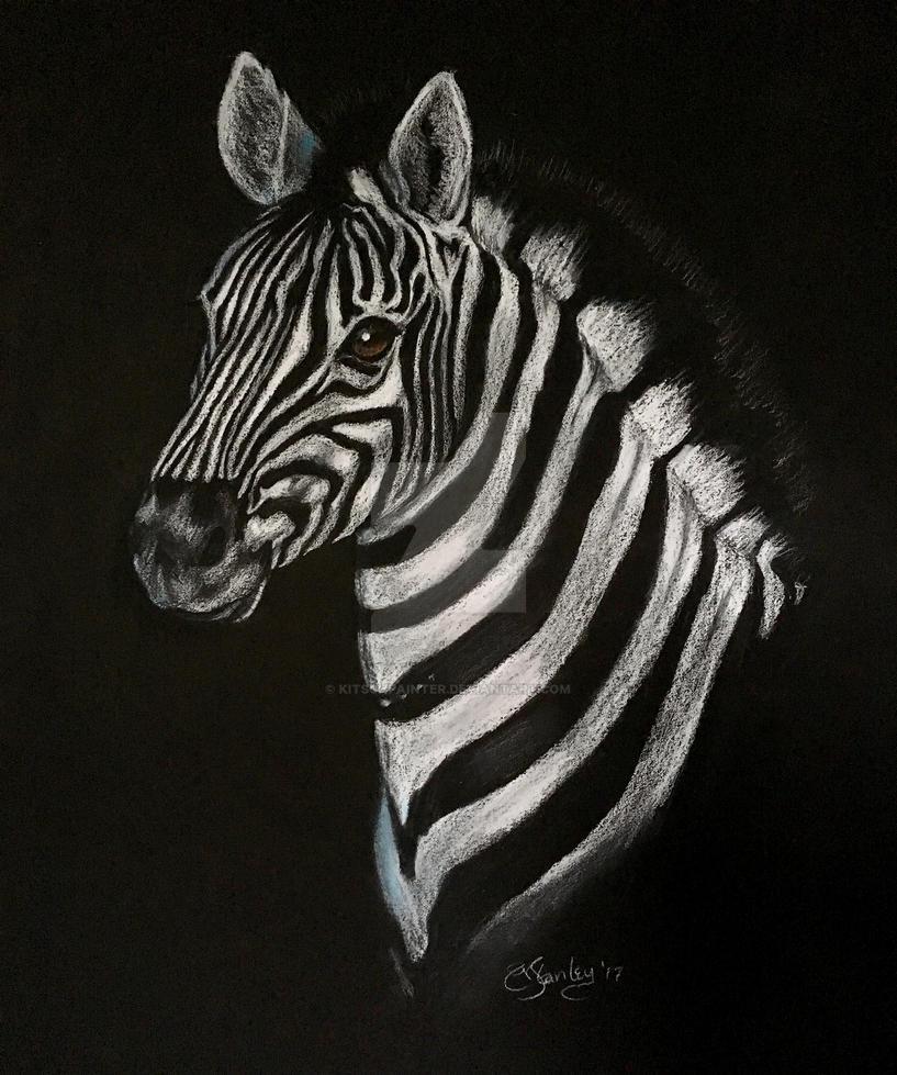 Zebra by kitschpainter
