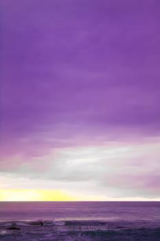 Purple Sea2