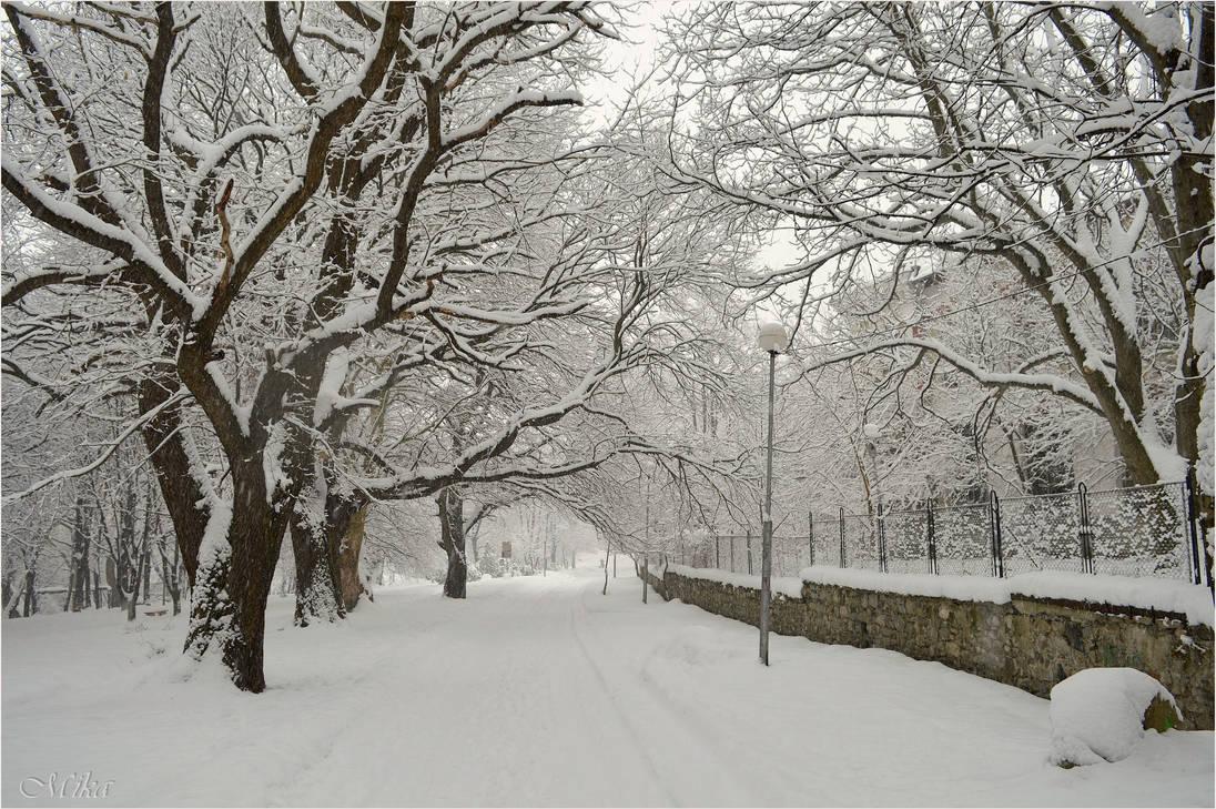 snow whiteside, mo - HD1332×850