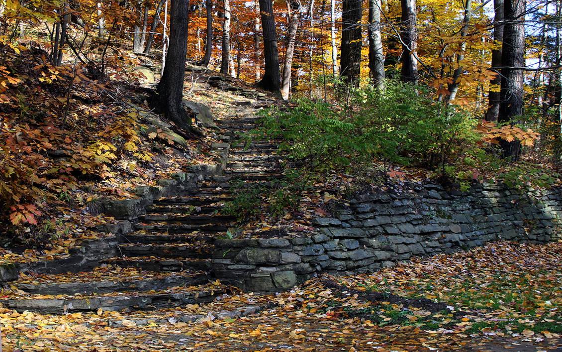 Park Steps by sed