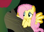 Fluttershy Worried