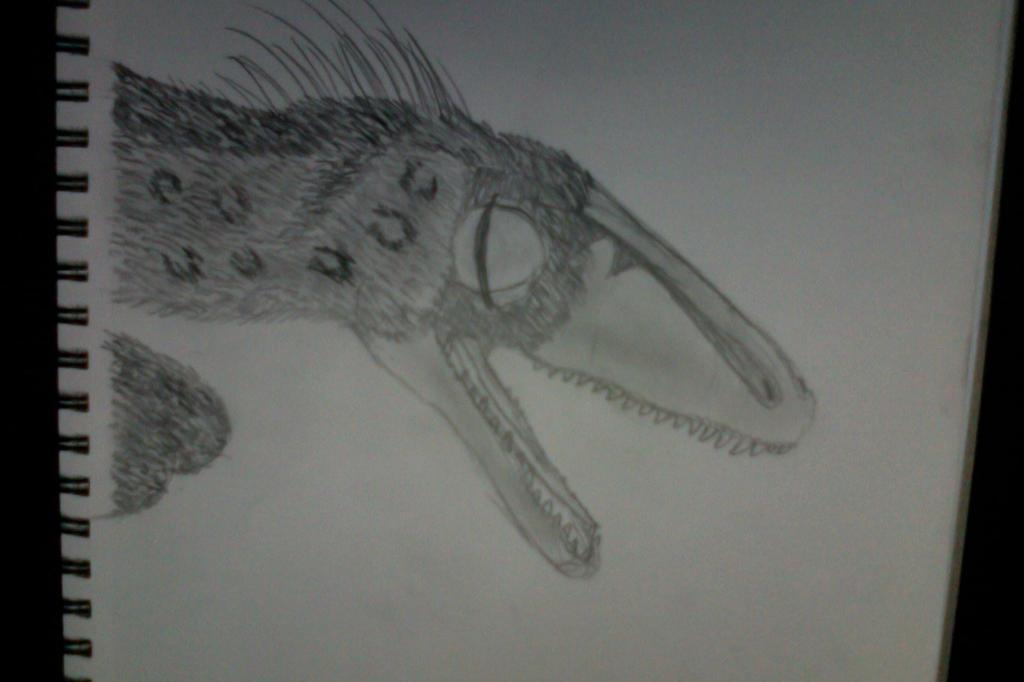 Troodon by alpaca2