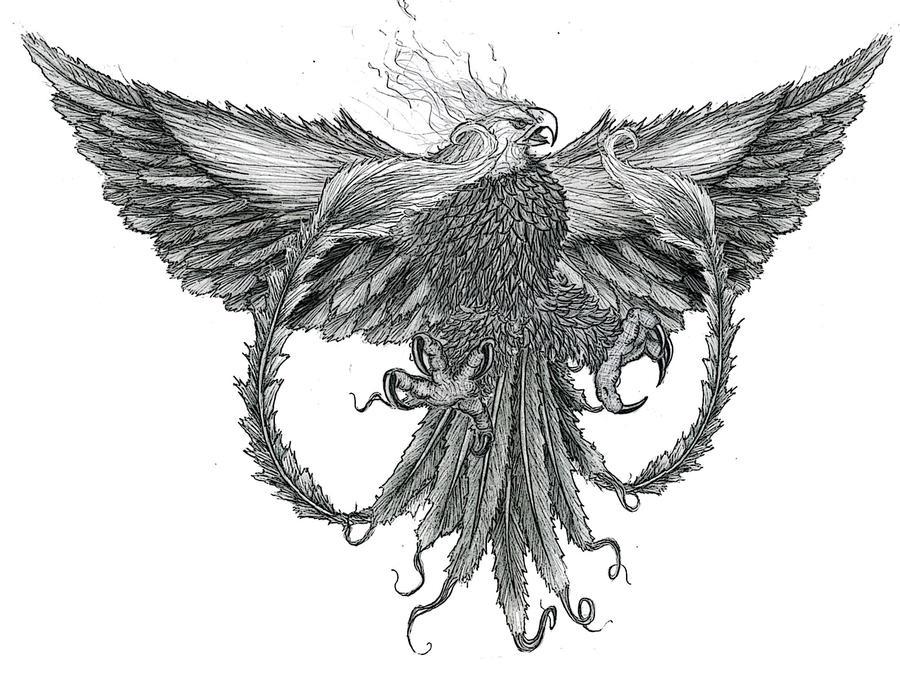 The Phoenix Tattoo by ~NinjaPigProductions on deviantART