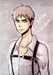 Jean Kirschstein from Attack on Titan 2