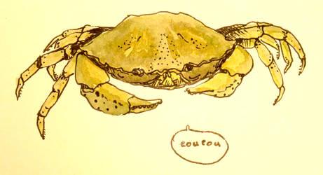 Crabe dans tes filets