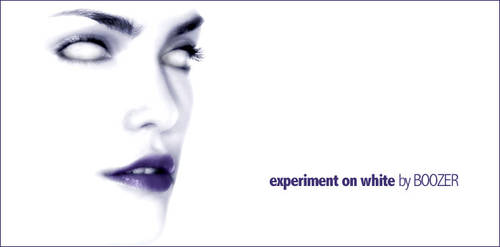 experiment on white by boozer