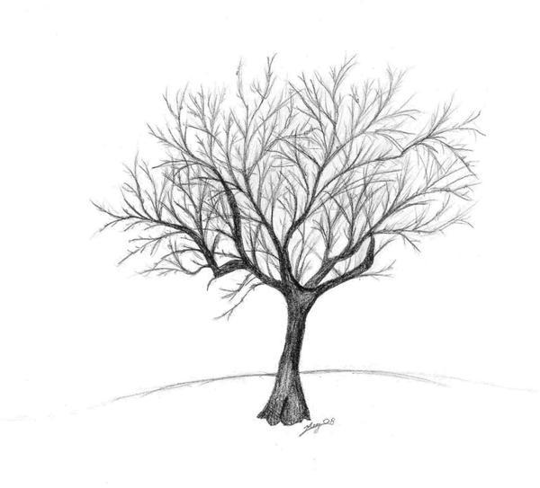 Winter Tree By Glitterbugparty ...