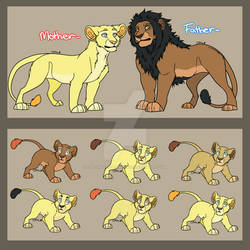 Lion Couple and Cub Adopts: 2